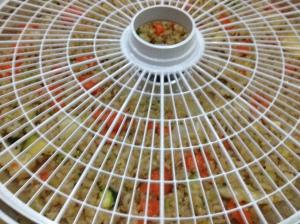 Stir-fry ready to dehydrate