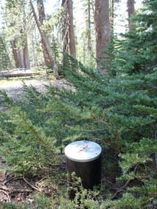 Our rented bear can on the JMT